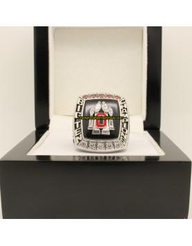 2008 Ohio State Buckeyes Big Ten co-champions Football Championship Ring